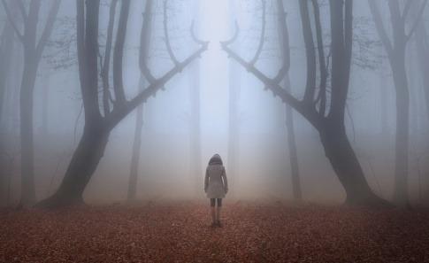 Eine Frau tritt in den Nebel, will das Akasha Feld betreten