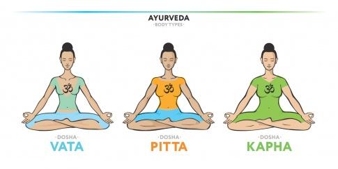 Eine Grafik zeigt die verschiedenen Dosha Typen Vata, Pitta und Kapha