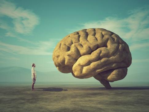 Bild von einem Mann vor überdimensionalem Gehirn