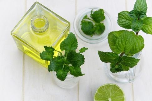 Ein Fläschchen Öl steht neben Blättern