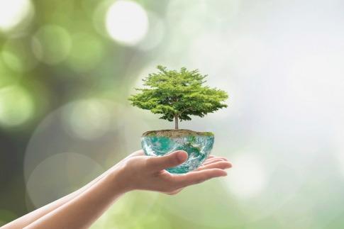 Das Wohlergehen der Umwelt liegt in unseren Händen