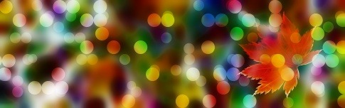 Farbige Lichtpunkte sind rund um ein Blatt