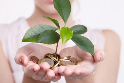 Eine Frau hält Münzen in der Hand, aus denen eine Pflanze wächst
