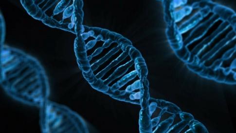 DNA-Strang