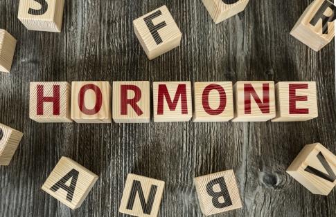 """Das Wort """"Hormone"""", dargestellt als Schriftzug mit je einem Buchstaben auf einem Holzblock."""