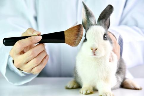 Vegane Kosmetik schützt Tiere