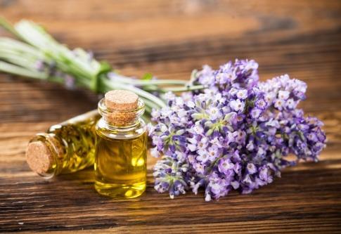 Ein Fläschchen Lavendelöl steht neben Lavendelblüten