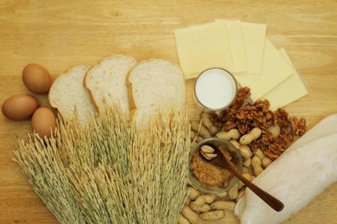 Weizen, Käse, Milch, Nüsse auf einem Tisch drapiert