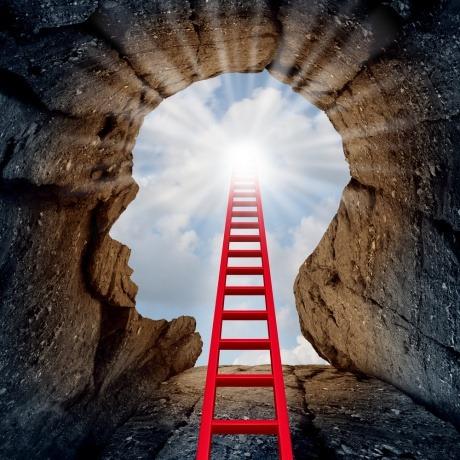 Eine Leiter führt direkt zum Bewusstsein