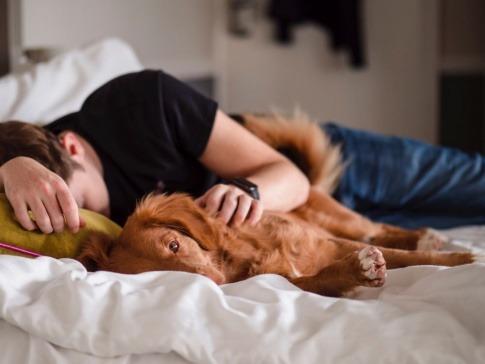 Ein Mann in der Midlife Crisis liegt mit dem Hund im Bett