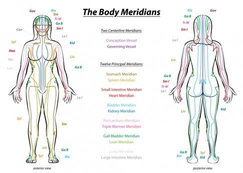 Die Energielaufbahnen sind im Körper einer Frau farblich eingezeichnet