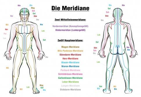 Die Meridiane im Körper des Menschen sind grafisch dargestellt