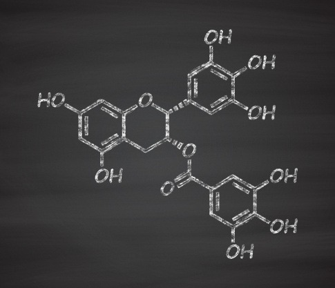 Molekülstruktur von Polyphenol