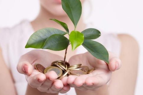 Eine Frau hält Geldmünzen und eine grüne Pflanze in ihren Händen