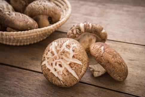 Einige Shiitake Pilze liegen nebeneinander