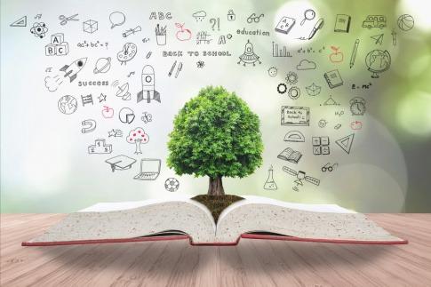Offenes Buch aus der Mitte heraus wächst ein Baum rund um ihn herum Symbole unseres Alltags