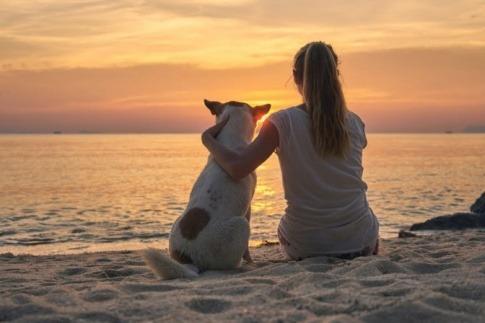 Eine Frau genießt den Vorteil Single zu sein und sitzt mit dem Hund am Strand