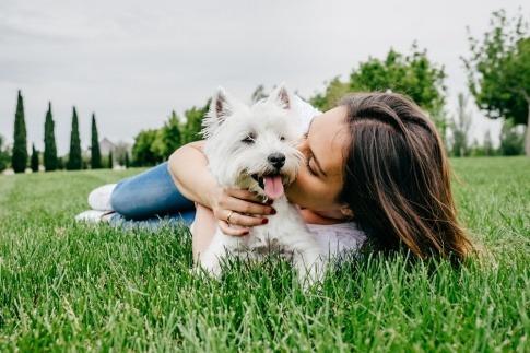 Frau mit Hund auf einer Wiese