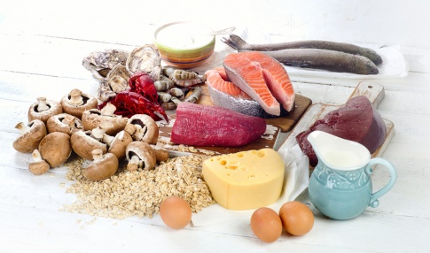 Fisch, Pilze, Milch, Eier, Käse auf einem Tisch