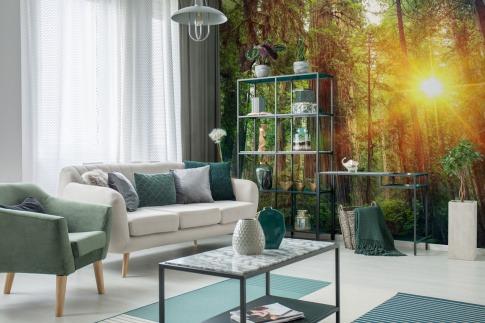 Eine Fototapete zeigt eine Waldlichtung mit Sonne