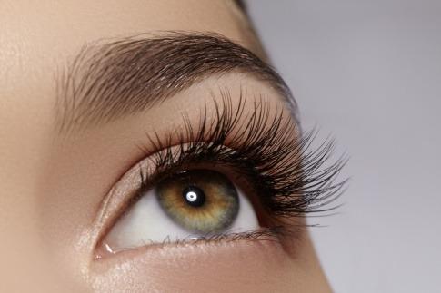 Das grüne Auge ist von langen Wimpern und dichten Augenbrauen umrahmt