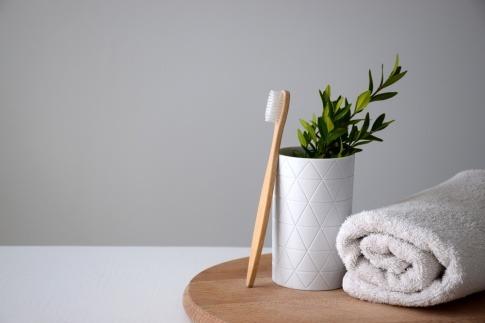 Zahnbürste, Pflanze und Handtuch
