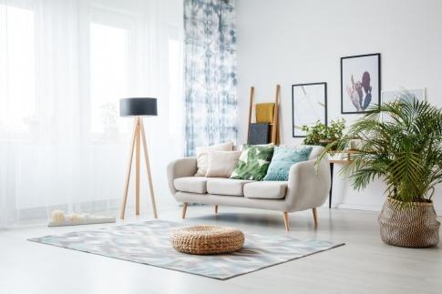 In einem Wohnzimmer sind Pflanzen zur Dekoration