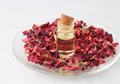 Eine Rose, ätherisches Öl und Rosenblätter liegen auf einem Teller