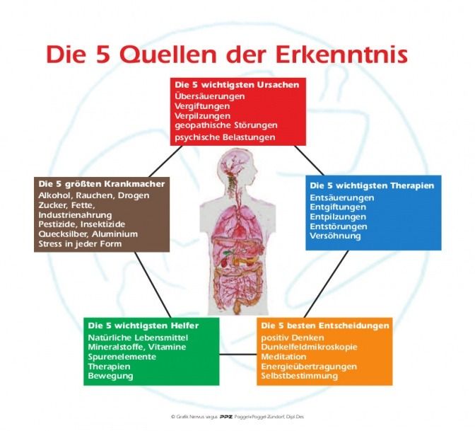 Auf einer Grafik sind die 5 Quellen der Erkenntnisse zu Parkinson