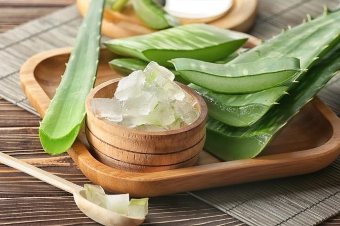 Aloe-Vera-Blätter und -gel