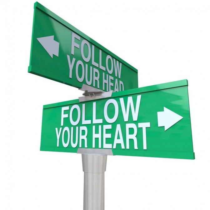 """Ein Schildermast, von dem ein Schild mit der Aufschrift """"Follow your heart"""" nach rechts zeigt und ein Schild mit der Aufschrift """"Follow your mind"""" zeigt nach links."""