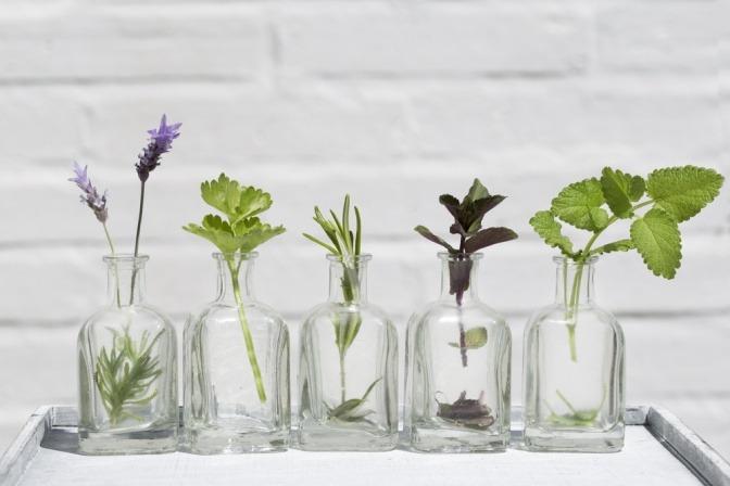 Gefäße mit Pflanzen darin
