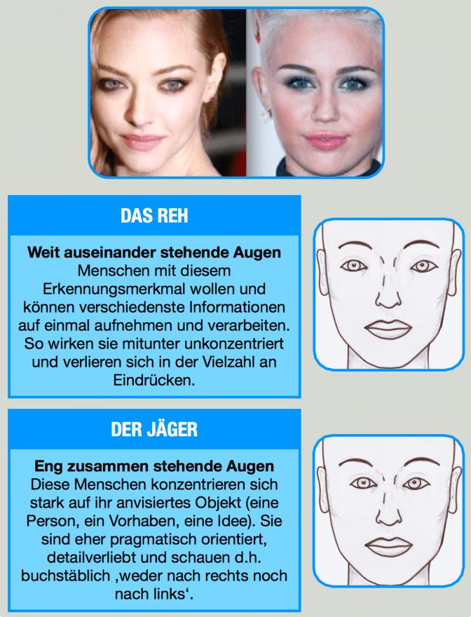 Auf einem Plakat ist der Unterschied zwischen Menschen mit weit und eng stehenden Augen erklärt