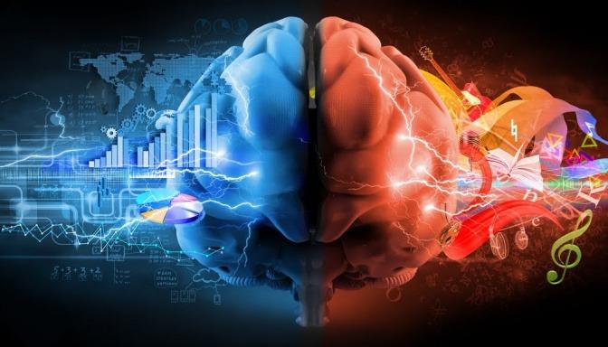 Eine Zeichnung eines menschlichen Gehirns, wobei die rechte Seite blau eingefärbt und mit analytischen Fähigkeiten assoziiert wird. Die linke Seite ist rot und soll die kreative Leistungsfähigkeit darstellen.