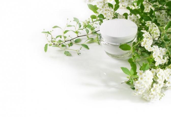 Neben einem Creme-Tiegel liegen grüne Äste mit weißen Blüten
