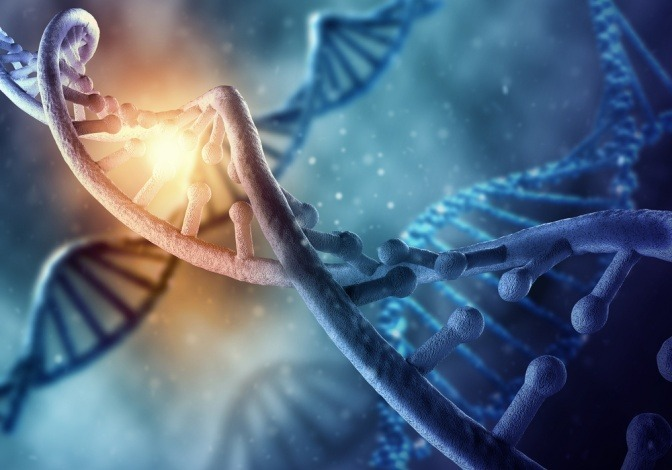 Ein DNA Strang ist auf einem blauen Hintergrund zu sehen