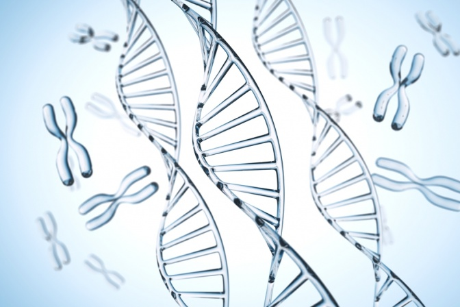 Chromosome und DNA Helix