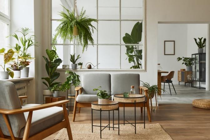 Ein energetisch eingerichtetes Wohnzimmer mit großen Fenstern