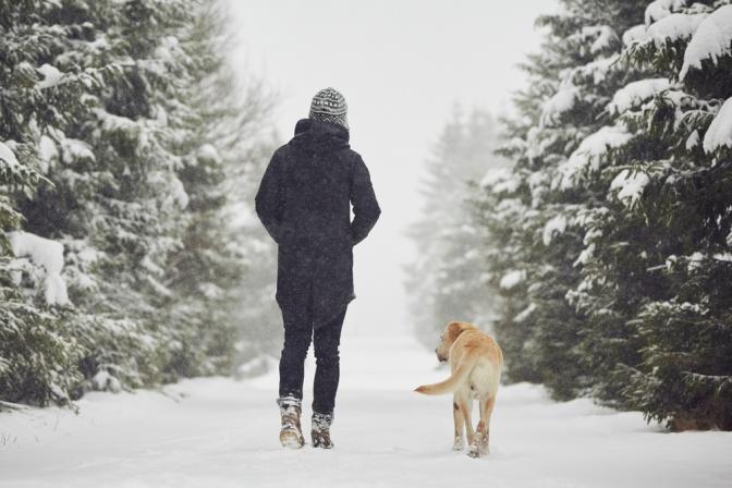 Eine Frau geht im Winter mit einem Hund spazieren