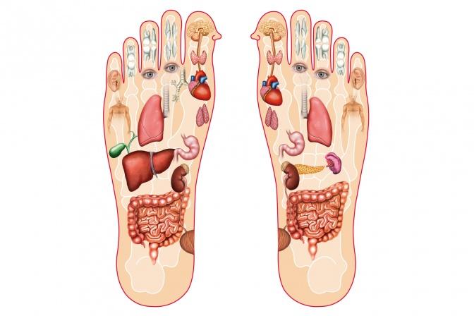 Fußreflexzonen auf einem Fuß eingezeichnet