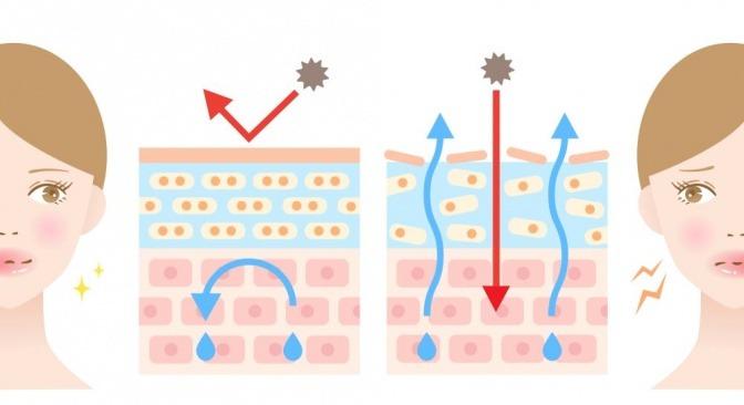 Darstellung der gesunden und ungesunden Hautschutzbarriere