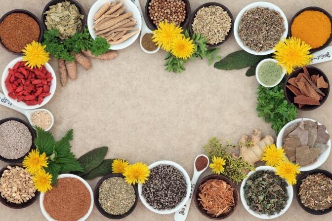 Eine Auswahl diverser Gerichte in kleinen Schüsseln, die in einem Kreis angeordnet sind.