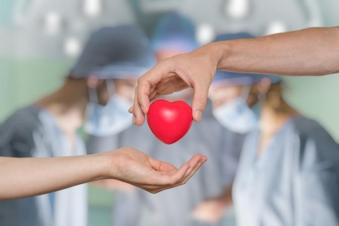 Eine symbolische Übergabe eines Spenderherzes zwischen zwei Ärzten.