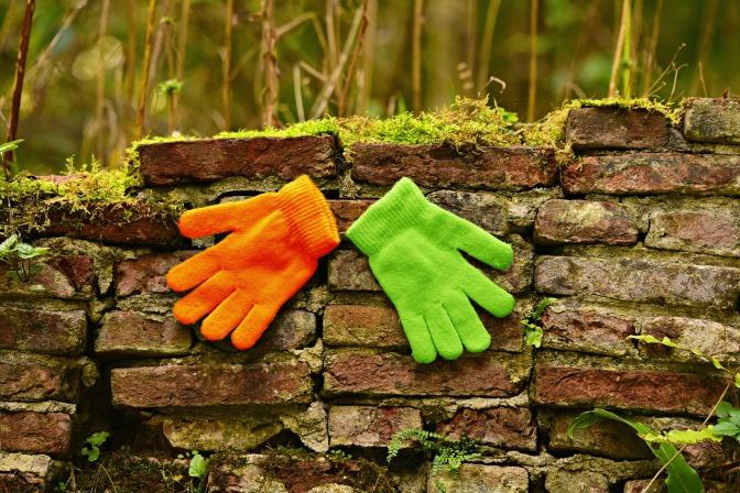 ein grüner und ein orangefarbener Handschuh liegen auf einem morschen Baumstamm in einem Wald.
