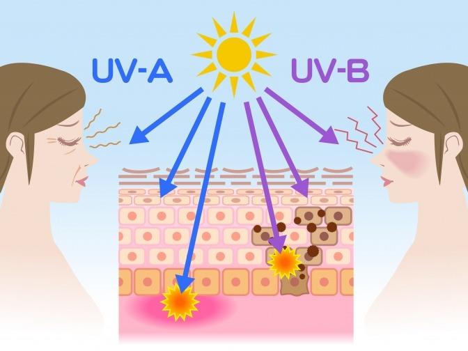 grafische Darstellung von UVA- und UVB-Strahlen in der Haut
