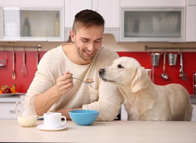 Mann sitzt mit seinem Hund in der Küche