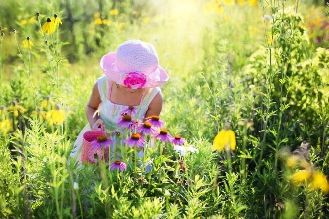 Ein Kind geht über eine Blumenwiese