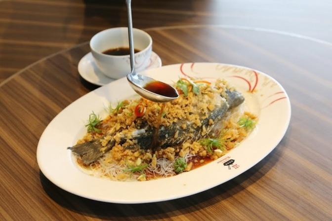 Aus einer Saucenkelle tropft eine dunkle Sauce auf einen Teller mit einem reichhaltigen Abendessen.
