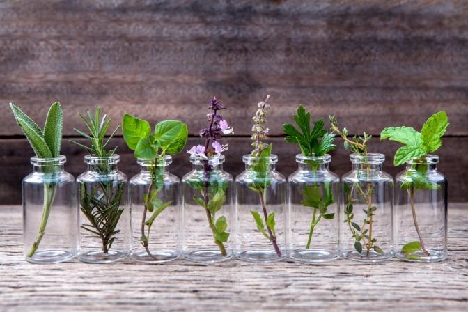 Mehrere Glasbehälter mit Ölen unterschiedlicher Art, die als Hausmittel gegen Spliss dienen, stehen nebeneinander.