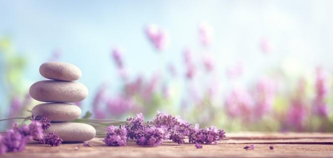 Lavendel liegt neben Steinen